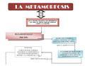 Metamorfosis resumen.pdf