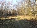 Mikolow, Poland - panoramio (148).jpg