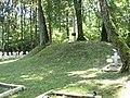 Military cemetery from World War I and World War II in Dąbrowa Tarnawacka near Tarnawatka.jpg