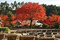 Mimurotoji Uji Kyoto Pref07s3s4592.jpg