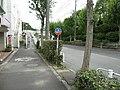 Minamigoyo - panoramio (30).jpg