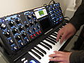 Minimoog Voyager Select, Electric Blue on Ash.jpg