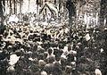 Množično zborovanje v Dolenjih Sušicah.jpg