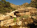 Molino Creek Boulders - Flickr - treegrow.jpg