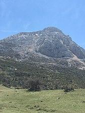 Monte en Sierra Mágina.jpg