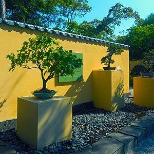 Morikami Museum and Japanese Gardens - Image: Morikami Bonzai Garden