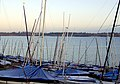 Morning masts, Draycote Water - geograph.org.uk - 1128363.jpg