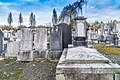 Mount Jerome Cemetery - 134360 (23910785707).jpg