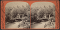 Mount Pleasant, Catskill Mountains, from Robert N. Dennis collection of stereoscopic views.png