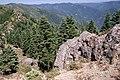 Mountaintop Views, Rogue River-Siskiyou National Forest (36275281064).jpg