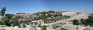 A panoramic of the entire Mount of Olives (Har...