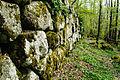 Mura megalitiche 1, Orto della Regina.jpg
