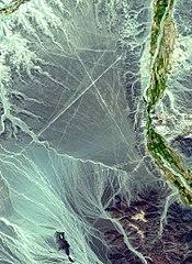 Image satellite d'une zone où des géoglyphes de Nazca sont visibles