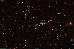 NGC 1257 SDSS.jpg