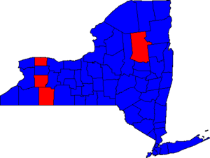 NYGov06County.png