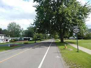 New York State Route 425 - NY 425 southbound in Wilson, leaving NY 18