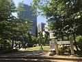 Nano Park - green - late spring - may 23 2019.jpeg