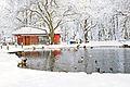 Naousa under snow.jpg