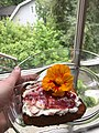 Nasturtium flower on ricotta toast.jpg