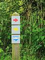 Nationaal Park Weerribben-Wieden. Gemarkeerd voetpad 03.JPG