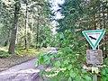 Naturschutzgebiet Hesel-, Brand- und Kohlmisse - panoramio (4).jpg