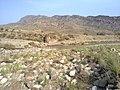 Navidhand new 339 - panoramio.jpg