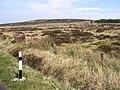 Near Binevenagh - geograph.org.uk - 791797.jpg