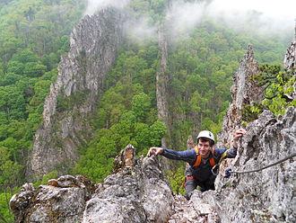 Nelson Rocks - Image: Nelson Rock two fins