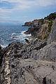 Nervi cliff 2.jpg