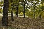 New Bavaria Park (Autumn 2017) 6.jpg