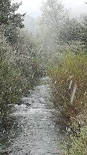 Nieve en mayo.jpg