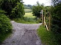 North Downs Way left, Pilgrim's way right - geograph.org.uk - 491391.jpg