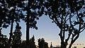 Norwalk, CA, USA - panoramio (2).jpg