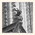Notre-Dame de Paris Chimera 2016-09-10 by Alain HAYS.jpg