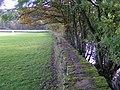 Novel footpath below Isles - geograph.org.uk - 276580.jpg