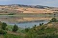 Oasi-Lago di Conza.JPG