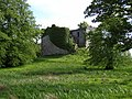 Old Castle Lachlan - geograph.org.uk - 448173.jpg