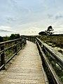 Old Wood bridge.jpg