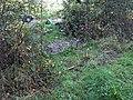 Old railway line - geograph.org.uk - 1403438.jpg