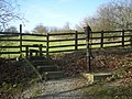 Old water-pump beside the path and stile - geograph.org.uk - 689866.jpg