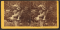 On the Pemigewasset, from Robert N. Dennis collection of stereoscopic views 3.png