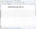 OpenOffice.org Calc 3.1.png