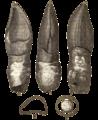 Oplosaurus.png