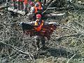 Oso Mudslide 140501-Z-RI264-001.jpg
