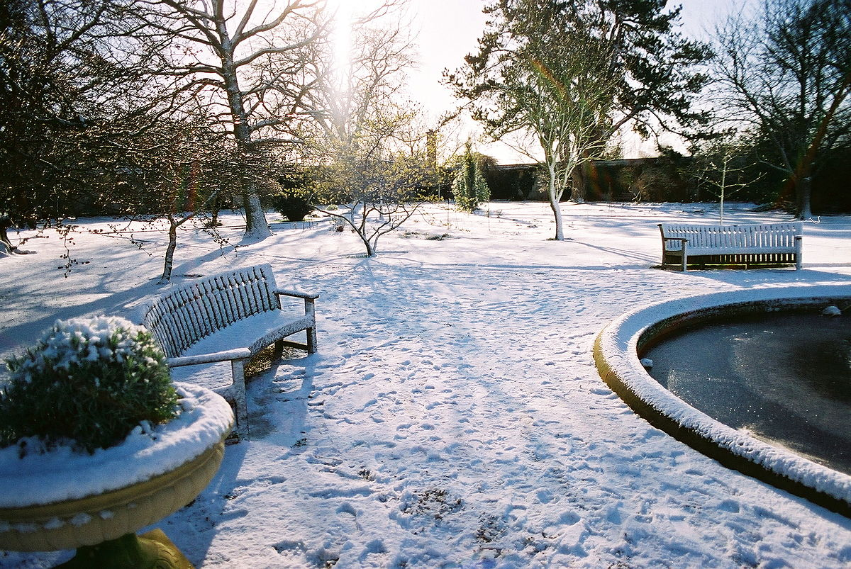 university of oxford botanic garden wikipedia