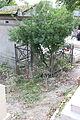Père-Lachaise - Division 20 - Contat 01.jpg