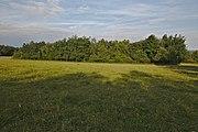 Přírodní rezervace Skalské rašeliniště.jpg