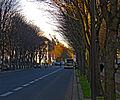 P1220076 Paris VIII avenue F Roosevelt rwk.jpg