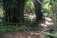 Vista do Parque (5)