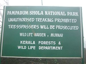 Pampadum Shola National Park - Unauthorized Trekking Prohibited